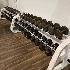 Iron Grip Dumbbell Set 12.5-100lbs Mix-Models w/Icarian Rack