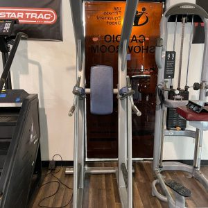 Life Fitness Discover Series Pull-Up/Dip/Knee Raise *FREE SHIPPING*